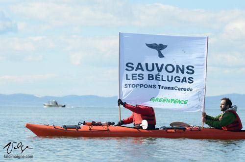 Manifestation de Greenpeace devant le bateau chargé de faire les levés sismiques dans le fleuve à Cacouna (photo largement utilisée dans la presse nationale) - 25 avril 2014